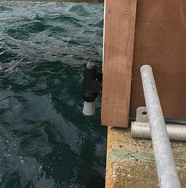 Tidal leve sensor Waterwatch