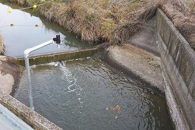 Weir leve monitoring Waterwatch