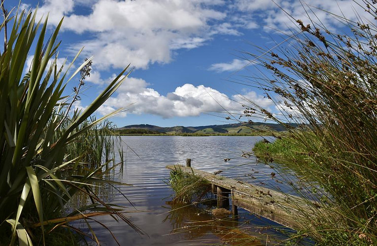 sinclair_wetlands_1.jpg