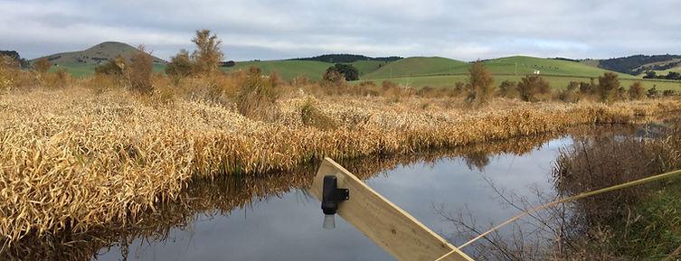 waterwtach ls1 installation in sinclair wetlands