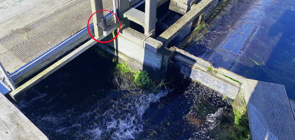 Waterwatch LS1 monitors inflow of water