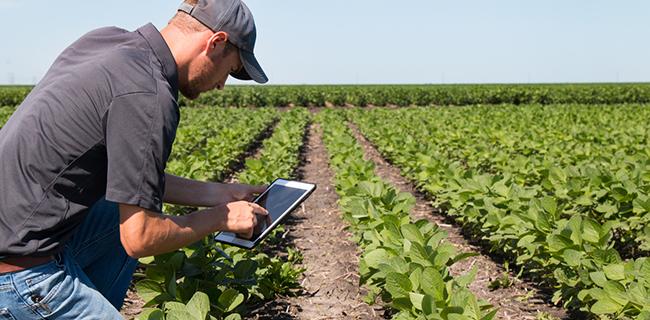 Smart Farming | Waterwatch
