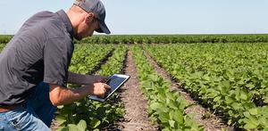 Smart Farming   Waterwatch