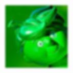 Green w Envy_square crop.jpg