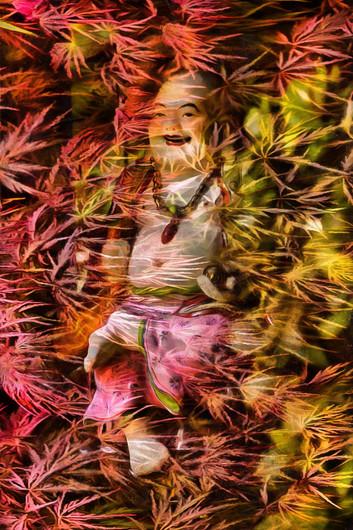Buddha behind a maple