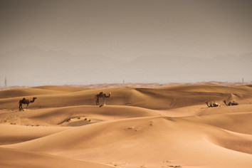 Desert ships