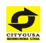 Citygusa.png