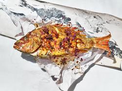 Gyotaku.Fish_1