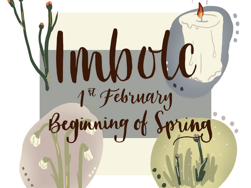 IMBOLC - THE FIRST SIGNS OF SPRING