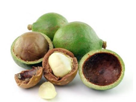 Tamanu Oil: el Ingrediente estrella de DAEN ECODEPIL