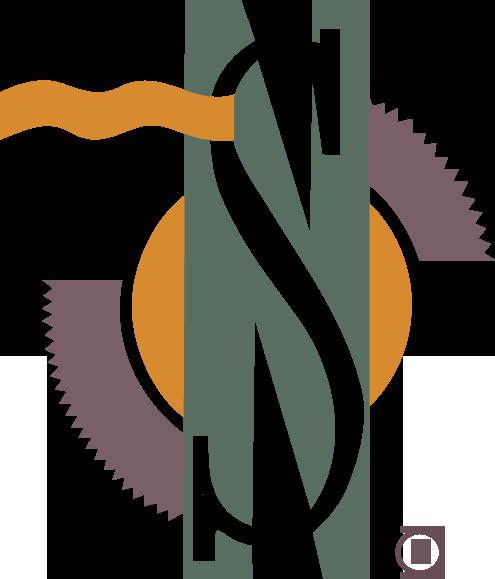 NSB Logo copy