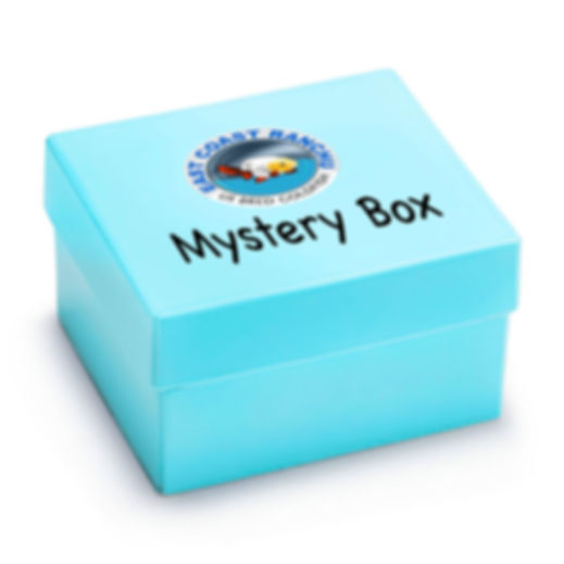 Mystery Box Raw.jpg