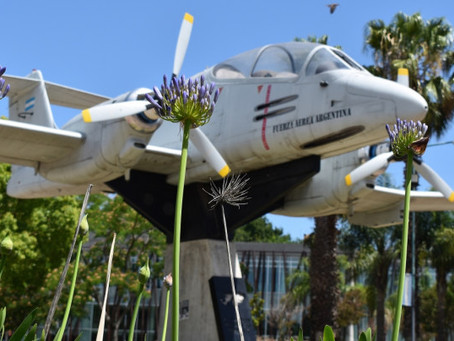 Preparan la conmemoración de un nuevo aniversario de la Guerra de Malvinas