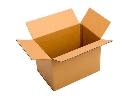 Editorial: Animarse a pensar por fuera de la caja