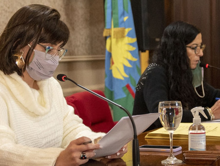 El HCD aprobó un importante convenio para la construcción de un Hogar Materno Infantil