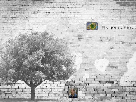 Muros, barreras y montículos (por Miguel A. Di Fino)