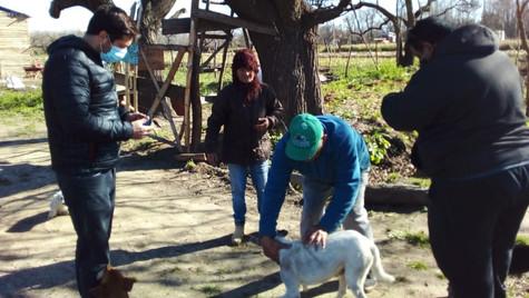 Más de 4.850 de gatos y perros recibieron la vacuna antirrábica