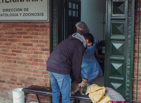 Bromatología y Zoonosis municipal: destacan el trabajo del personal en la pandemia