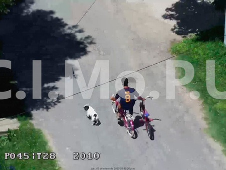 Por el accionar del CIMoPU, la policía logró recuperar en minutos dos bicicletas robadas