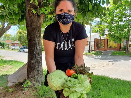 Entregan verdura orgánica para fomentar la alimentación saludable