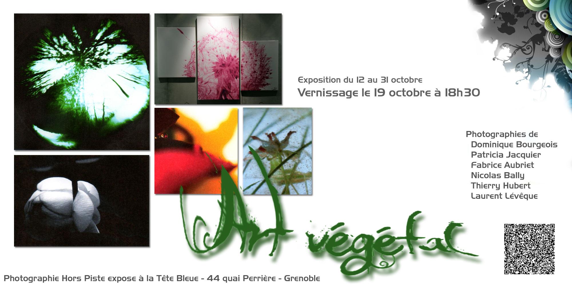 Art végétal