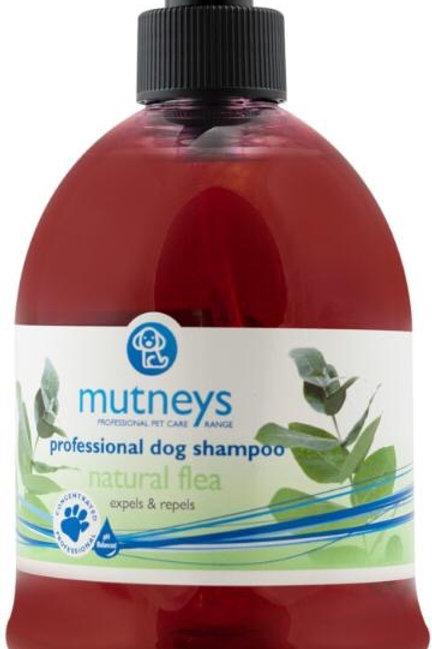 Flea Shampoo - Mutneys Natural Flea Shampoo