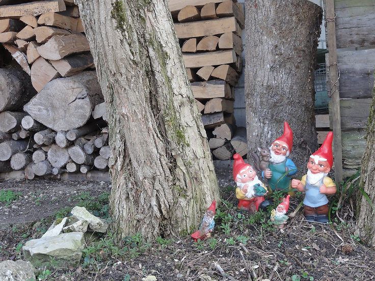 gnomes switzerland.JPG