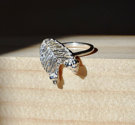 The Fernery Ring