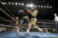 Boxers sur l'anneau