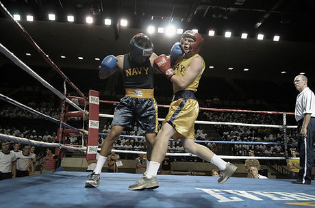 Boxers on the Ring