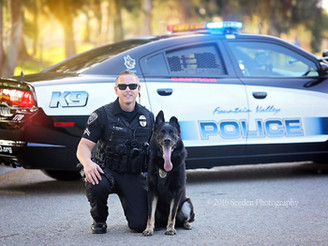 FVPD K9 assists Riverside PD with combative suspect