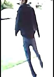 Police seek residential burglary suspects
