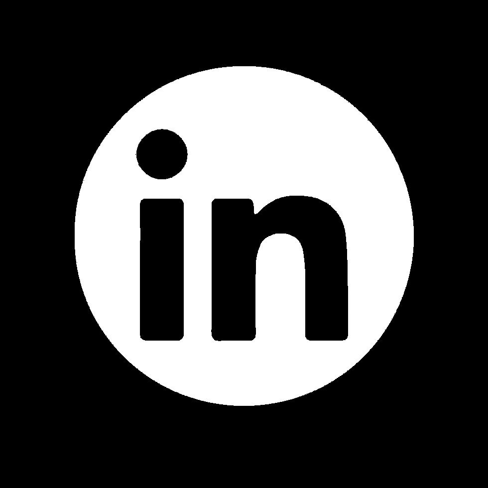social icons-04