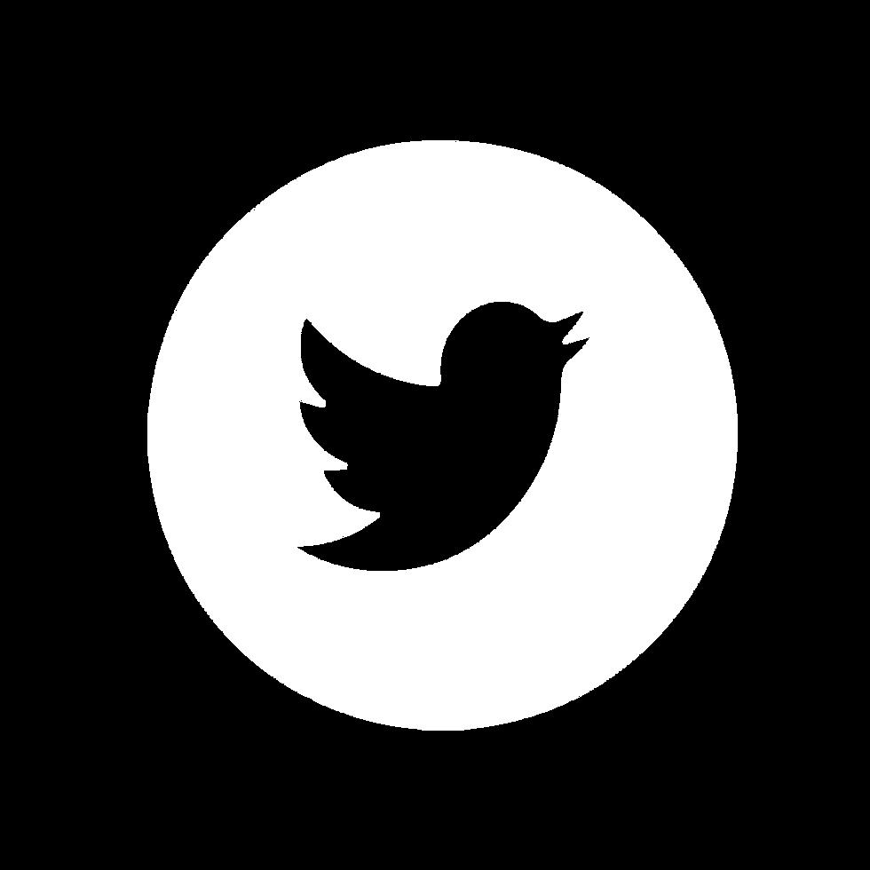 social icons-02