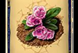 Just Natural Soil Conditioner – Jolly Gardener