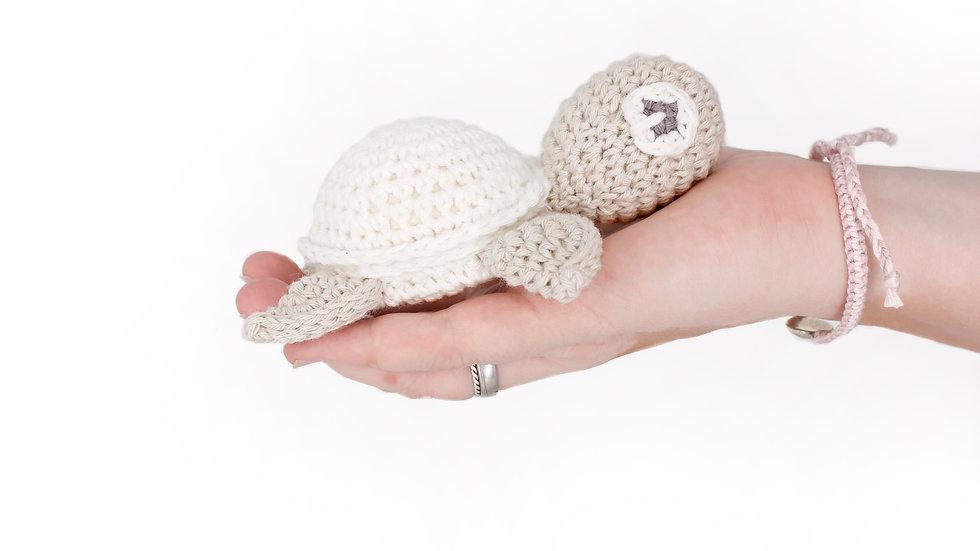 Schildkröte cuddle white