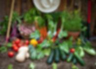 permaculture-2.jpg