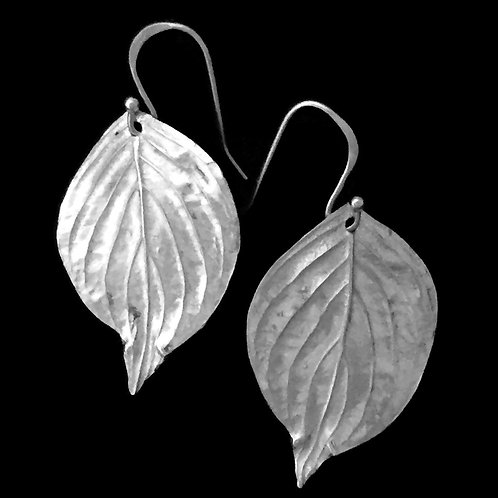 Dogwood Leaf Earrings~Large