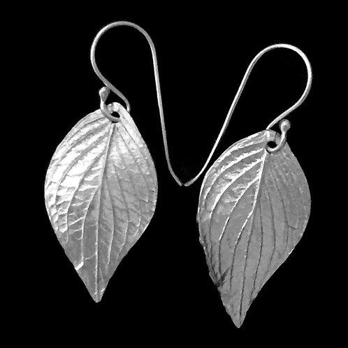 Dogwood Leaf Earrings~Medium