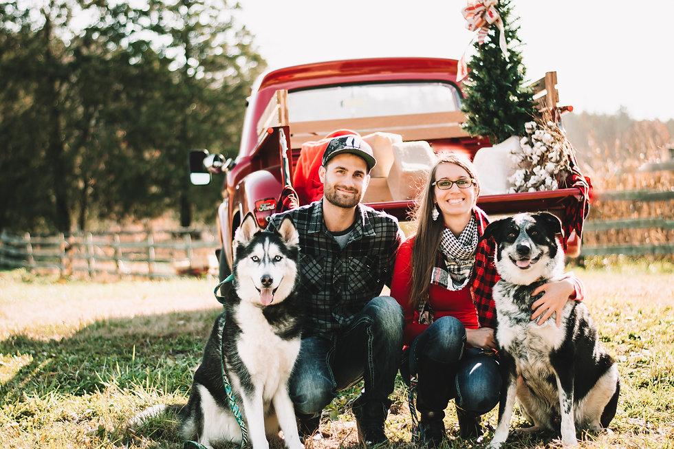 Christmas Truck 2 - Dogs.jpg