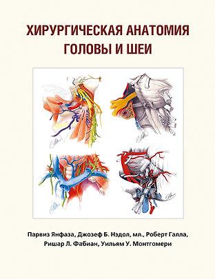 Хирургическая анатомия головы и шеи