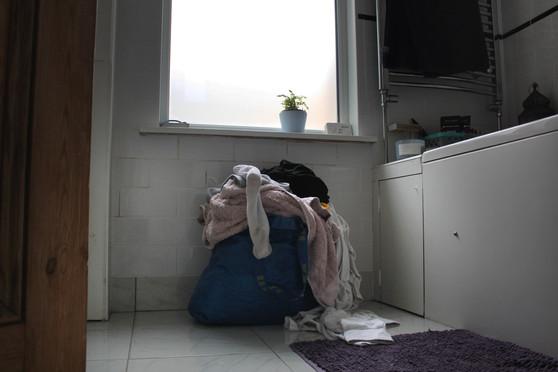 Washing Basket 2
