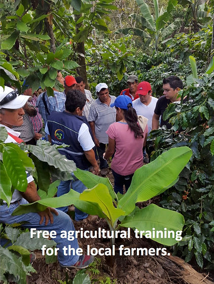 An initiative offered by the farmers of our first Direct Trade coffee: Cafe Pionero from Ecuador