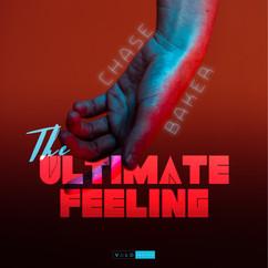 VALO255 The Ultimate Feeling Cover Art 3000x3000.jpg