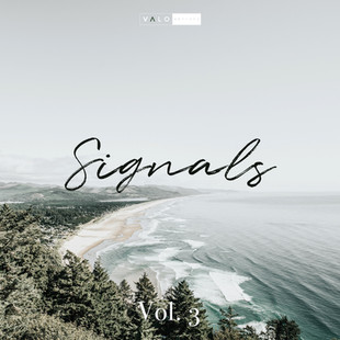 Signals - Vol. 3