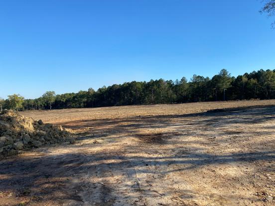 Tilling Ground For Tree Farm