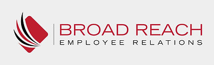 Broad Reach Logo - Grey Background.jpg