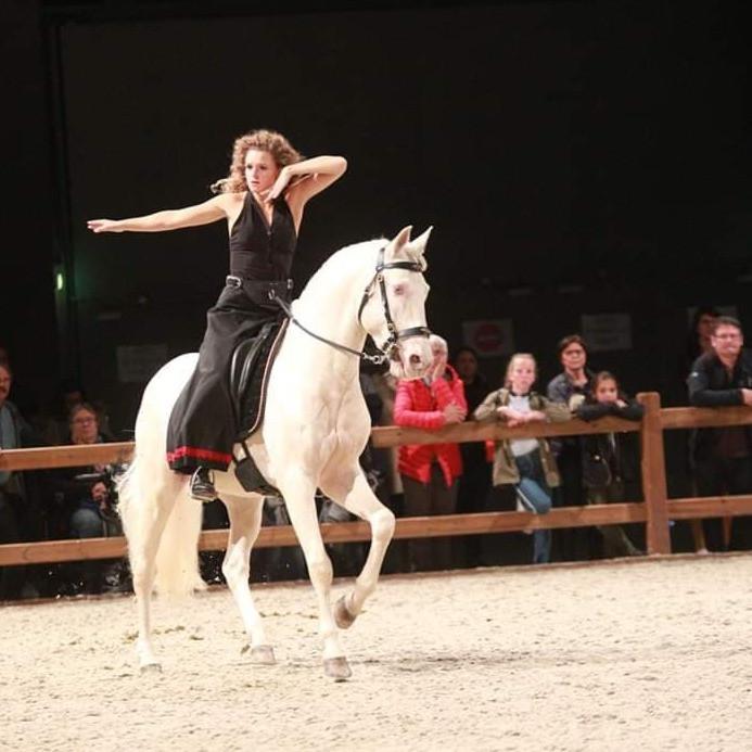 Salon du cheval de Angers 2018