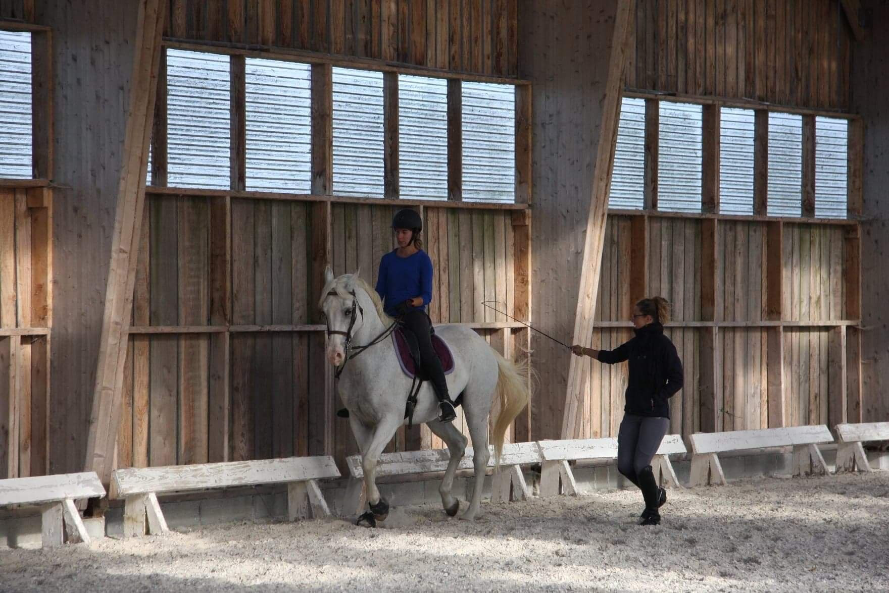 Stage / Cours individuel dressage