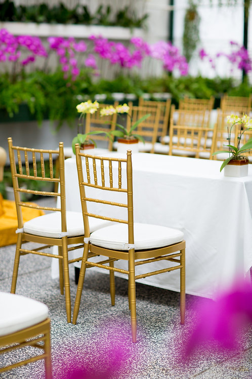 Rental 30 Guests - Chair Upgrades and Dinnerware